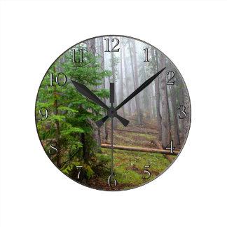 Mist in pine tree forest round clock