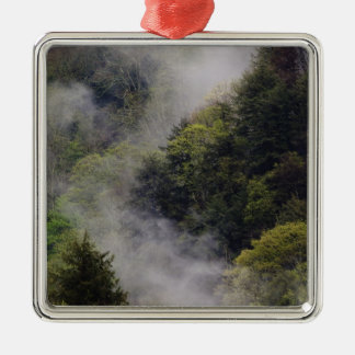 Mist rising from mountainside after spring rain, christmas ornament