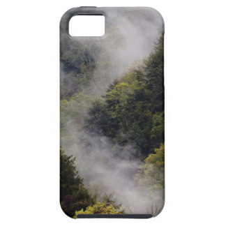 Mist rising from mountainside after spring rain, iPhone 5 case