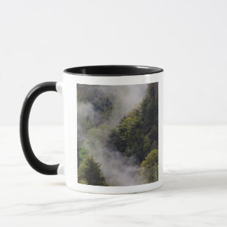 Mist rising from mountainside after spring rain, mug