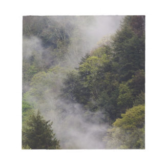 Mist rising from mountainside after spring rain, notepad
