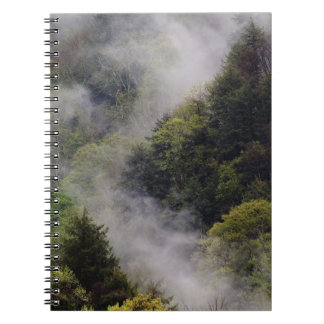 Mist rising from mountainside after spring rain, spiral notebook