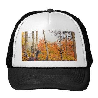 Misty Autumn Aspen Cap
