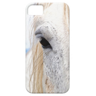 Misty Barely There iPhone 5 Case
