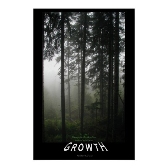 """Misty Forest """"Growth"""" Motivational Photo Poster"""