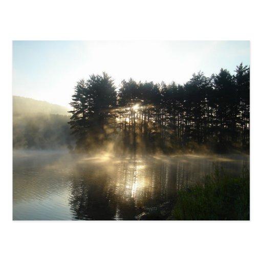 Misty Morning Sunrise Allegheny State Park Postcard
