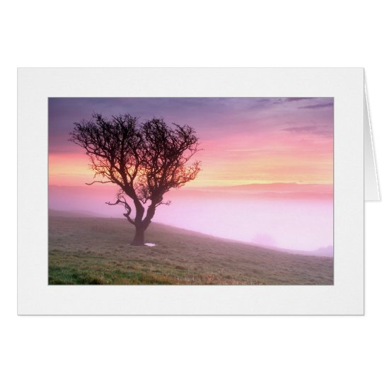 Misty Sunrise Card