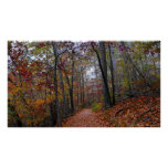 Misty Trail in the Colourful Autumn Forest Poster