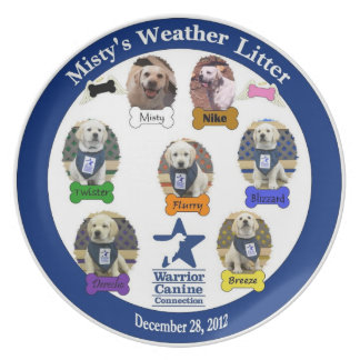 Misty's Weather Litter Plate