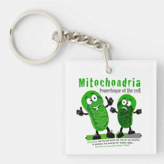 Mitochondria Powerhouse of the Cell Key Ring