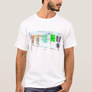 Mitonchondrial Intermembrane Space Diagram T-Shirt