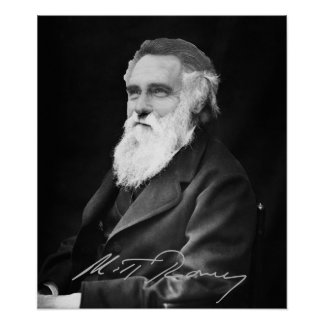 Mitt Romney  Evolution Poster