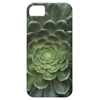 Mitte des Kaktus Barely There iPhone 5 Case