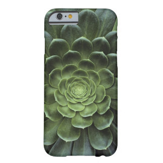 Mitte des Kaktus Barely There iPhone 6 Case