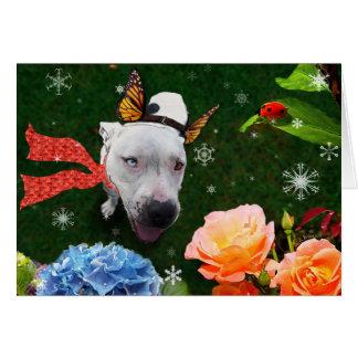Mitzy the Mariposa, Holiday Greeting Card