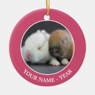 Mix breed of Netherland Dwarf Rabbits Christmas Ornament