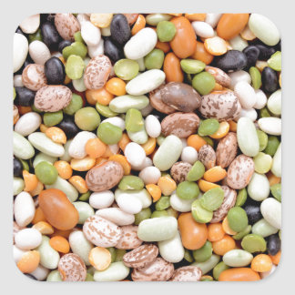 Mixed beans square sticker