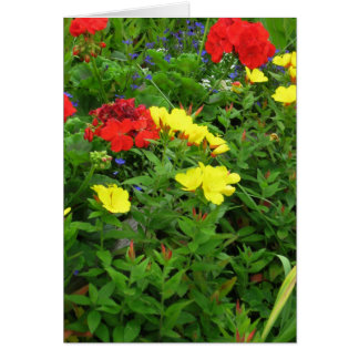 Mixed Blooms Olympia Farmer' s Market Garden Greeting Card