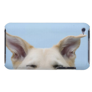 Mixed-breed dog, close-up on head and ears iPod Case-Mate cases