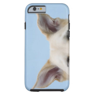 Mixed-breed dog, close-up on head and ears tough iPhone 6 case