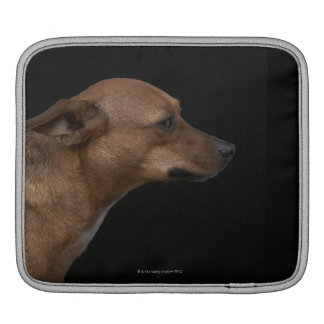 Mixed breed dog profile on black background iPad sleeve