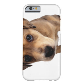 Mixed-Breed Puppy Barely There iPhone 6 Case