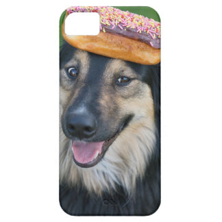 Mixed breed shepherd with donut on head iPhone 5 cover