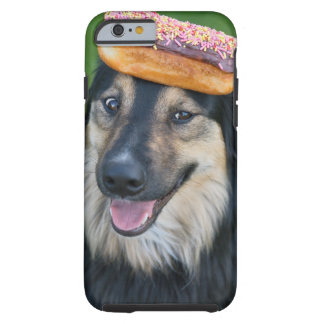 Mixed breed shepherd with doughnut on head tough iPhone 6 case