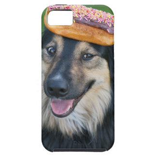 Mixed breed shepherd with doughnut on head iPhone 5 cover