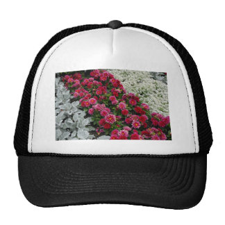Mixed flowers in flower bed mesh hats