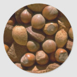 Mixed nuts in shells round sticker