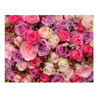 Mixed pastel roses by Therosegarden Postcard