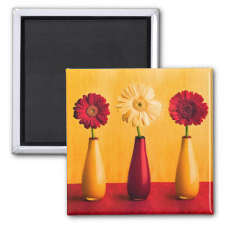 Mixed Red Yellow Gerbera Daisies Orange Background Square Magnet