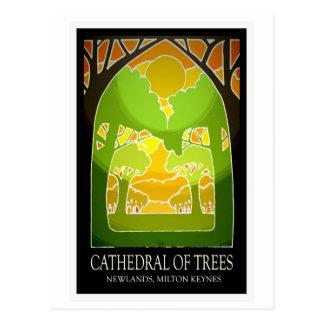MK' Cathedral of Trees vintage postcard
