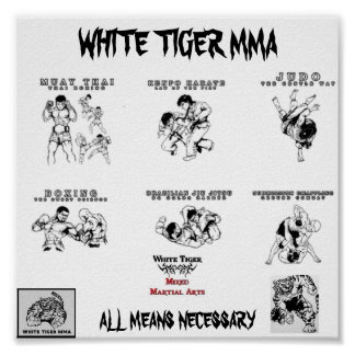 mma all arts2, Logo1_copy-224x172, tiger mma, u... Poster
