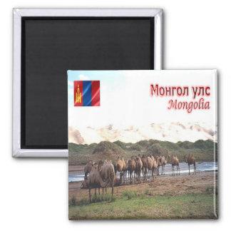 MN - Mongolia - Khongoryn Els Camels Square Magnet