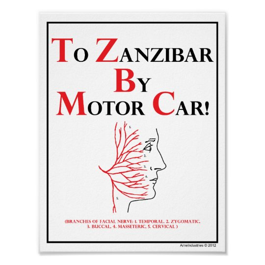 Mnemonic: To Zanzibar By Motor Car Poster