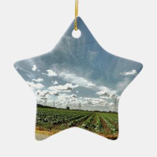 mnnn christmas ornament