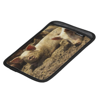MO: Ste Genevieve, pig farm iPad Mini Sleeve