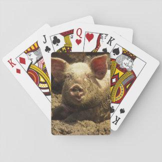 MO: Ste Genevieve, pig farm Poker Deck