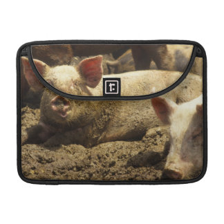 MO: Ste Genevieve, pig farm Sleeve For MacBook Pro