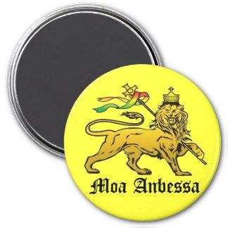 Moa Anbessa Magnet