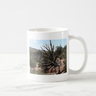 moab scenery coffee mugs