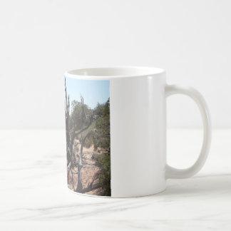 moab scenery mug