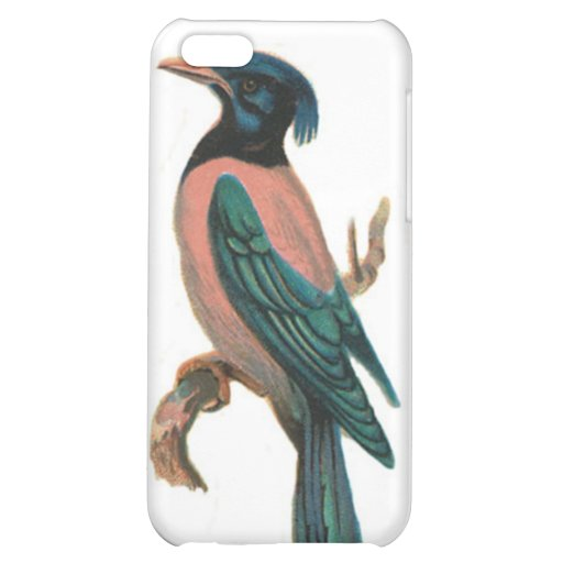 mobile iphone speckcase - bird picture - paslor cover for iPhone 5C