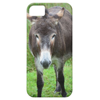 """Mobile phone covering """"donkey """" barely there iPhone 5 case"""