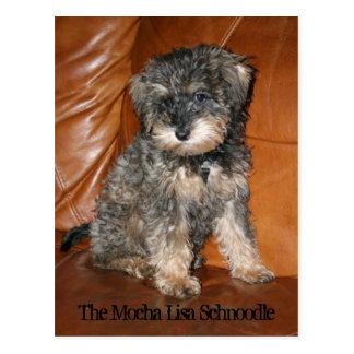 Mocha Lisa Schnoodle Postcard