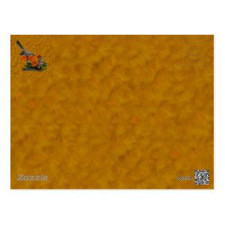 Mockingbird (Arkansas, Florida, Mississippi,Texas) Postcard