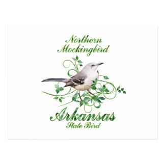 Mockingbird Arkansas State Bird Postcard