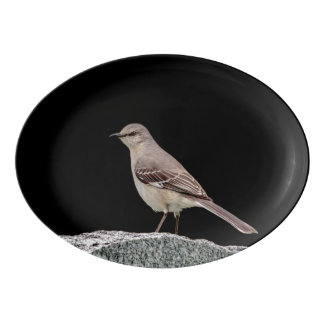 Mockingbird on a tombstone porcelain serving platter